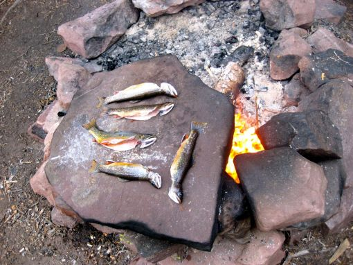 cooking a few of the bigger fish we caught